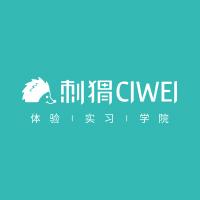 深圳刺猬教育科技有限公司
